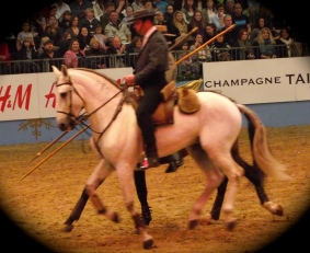Portuguese - The Lusitano Ride 2