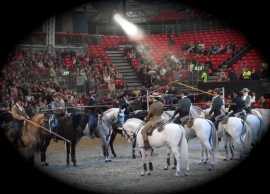 Portuguese - The Lusitano Ride 5