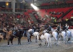 Portuguese - The Lusitano Ride 6